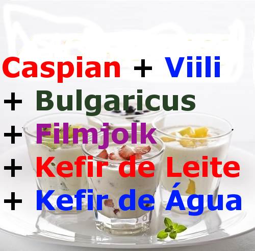 6 Probióticos – Caspian, Viili, Bulgaricus, Filmjolk, Kefir de Leite, Kefir de Água. Compre Aqui Só R$99,90 os 6 Juntos com Frete Grátis para Todo Brasil.